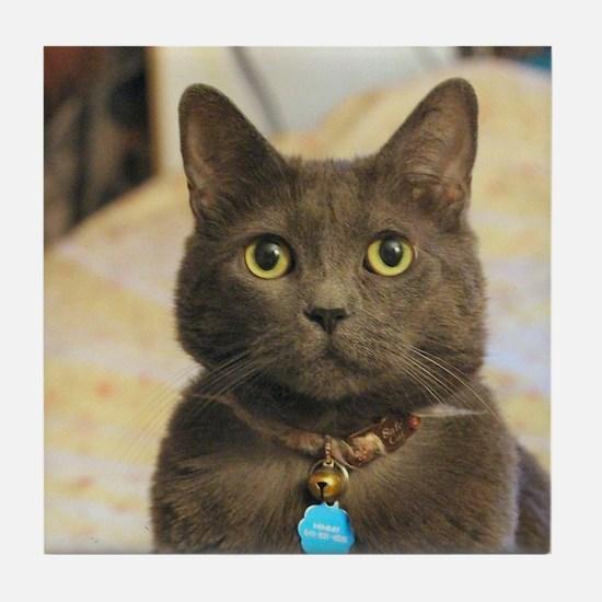 Cute Russian blue cat Tile Coaster