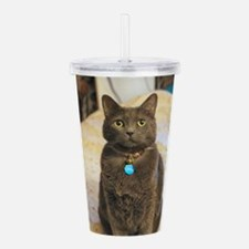 Cool Feline Acrylic Double-wall Tumbler