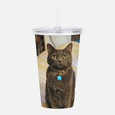 Cute Feline Acrylic Double-wall Tumbler