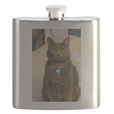 Funny Blue cat Flask