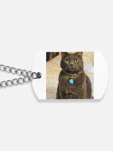 Unique Blue cat Dog Tags