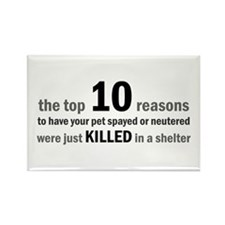 10 Reasons to Spay/Neuter Rectangle Magnet (100 pa
