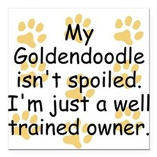 Well Trained Goldendoodle Owner Square Car Magnet