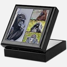 Primates Collage Keepsake Box