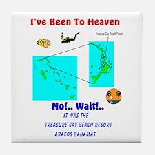 Funny Hawks cay Tile Coaster