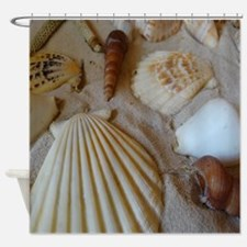 Beautiful Seashells Shower Curtain
