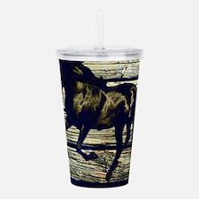 barn wood black horse Acrylic Double-wall Tumbler