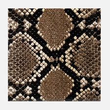 Snake Skin Tile Coaster
