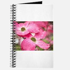 Spring rain Journal