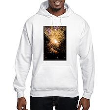 Finale Burst Hoodie Sweatshirt