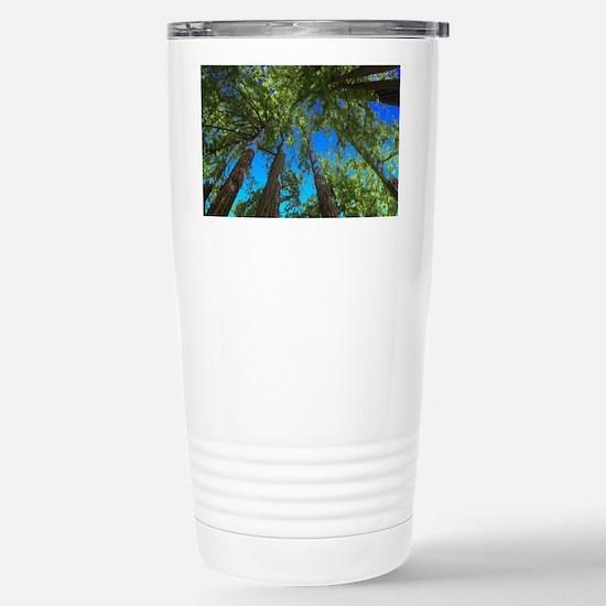 Muir Woods treetops Stainless Steel Travel Mug