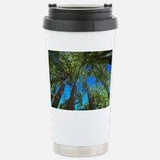 Muir Woods treetops Travel Mug