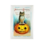 Halloween Owl & Pumpkin Rectangle Magnet (10 pack)