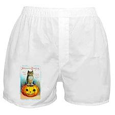 Halloween Owl & Pumpkin Boxer Shorts