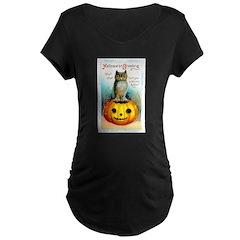 Halloween Owl & PUmpkin (Front) T-Shirt