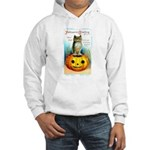 Halloween Owl & PUmpkin (Front) Hooded Sweatshirt