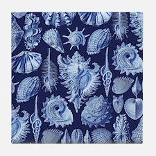 Vintage Seashells Tile Coaster