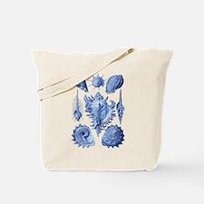 Vintage Seashells Tote Bag