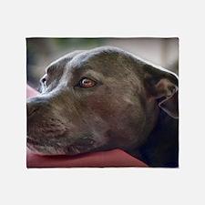 Loving Pitbull Eyes Throw Blanket