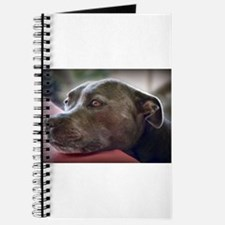 Loving Pitbull Eyes Journal