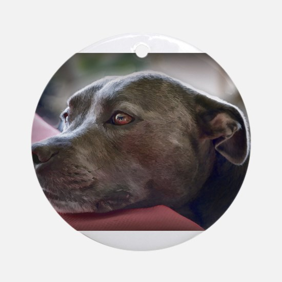 Loving Pitbull Eyes Ornament (Round)