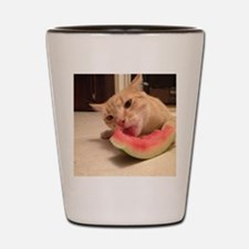 WatermelonColby Shot Glass