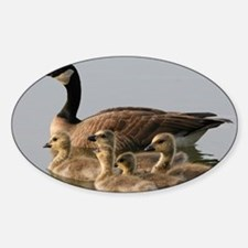 Mother Goose and Her Goslings Decal