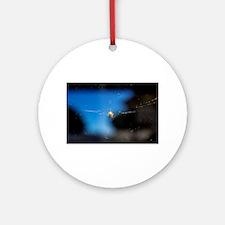 Itsy Spider II Ornament (Round)
