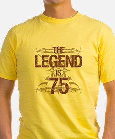Men's Funny 75th Birthday T