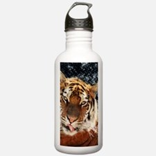 modern grunge cool ti Water Bottle