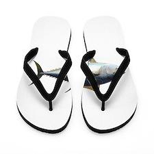 Bluefin Tuna illustration Flip Flops