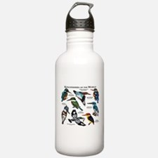 Kingfishers of the Wor Water Bottle