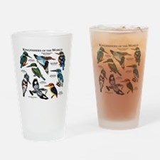 Kingfishers of the World Drinking Glass