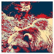 mountain wildlife grizzly bear Poster