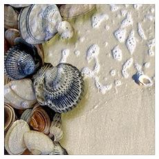 summer ocean beach seashells Poster