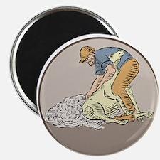 Farmworker Shearing Sheep Circle Etching Magnets
