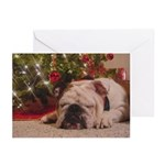 Christmas Bulldog Greeting Cards (Pk of 10)