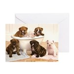 Puppy Bulldog Greeting Cards (Pk of 10)