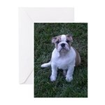 Thank you Bulldog Greeting Cards (Pk of 10)