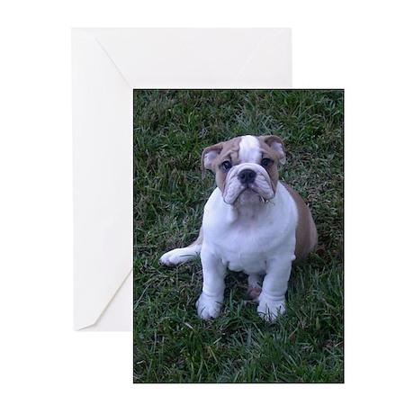 Thank you Bulldog Greeting Cards (Pk of 10)