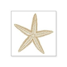 "Sand Starfish Square Sticker 3"" x 3"""