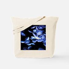 Dangerous Beauties Tote Bag