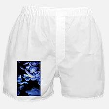 Dangerous Beauties Boxer Shorts