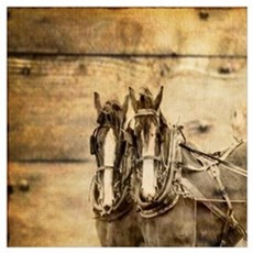 western country farm horse Poster