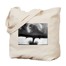 Oldest Tornado photo 1884 South Dakota Tote Bag