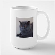 blue British Shorthair cat Mugs