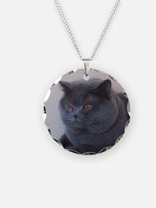 blue British Shorthair cat Necklace