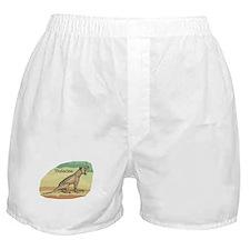 Thylacine Boxer Shorts