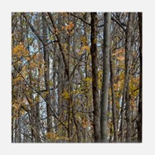 forest trees Camo Camouflage  Tile Coaster