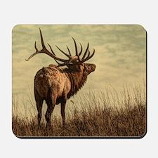rustic western wild elk Mousepad